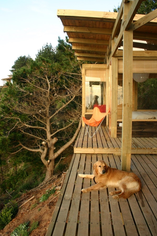 casa-lemn-pe-stanca5